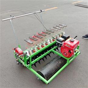 xnjx-6手推式秋番茄菠菜播种机