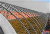 专业生产镀锌带几字钢骨架温室大棚的建造