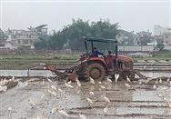河北省关于提交伪造、冒用拖拉机翻倾护装置强度检验报告整改报告的函