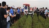 全国油料作物全程机械化推进活动在山东举办