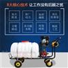 RH-PWQ汽油大功率喷药机 200升高压喷雾器